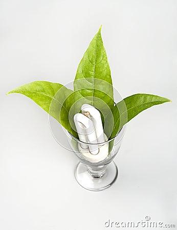 Energia do verde do bulbo da economia de potência CFL