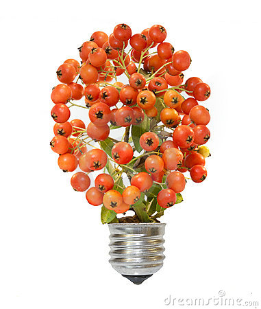 Energiesparende eco Lampe