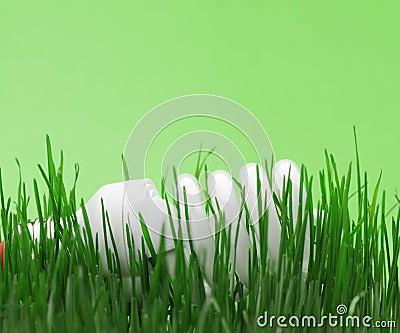 Energy saving compact fluorescent lightbulb