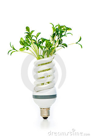 Energy saving lamp with green seedling