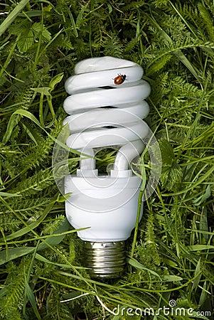 Free Energy Saving Light Bulb Royalty Free Stock Image - 5143186