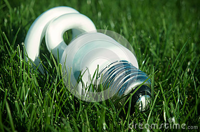 Energy saving light bulb on green grass