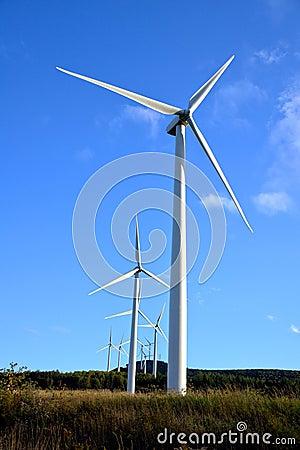 Energy Wind Turbine Farm with Windmill Turbines