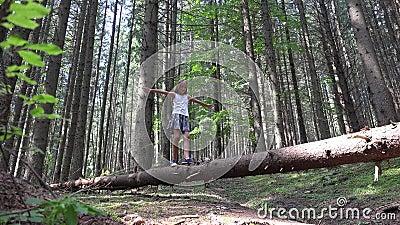 Enfant en Forest Walking Tree Log Kid jouant le bois ext?rieur campant de fille d'aventure clips vidéos