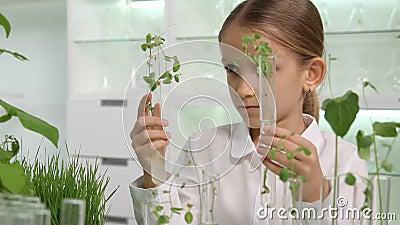 Enfant en laboratoire de chimie, sciences de l'école Cultivant les plants de semis Classe de biologie banque de vidéos