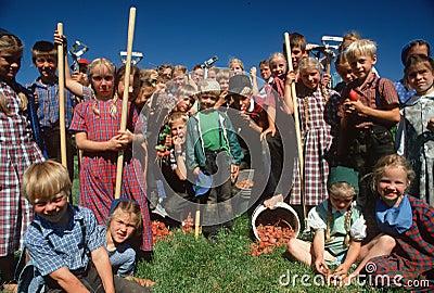 Enfants amish de ferme Image éditorial