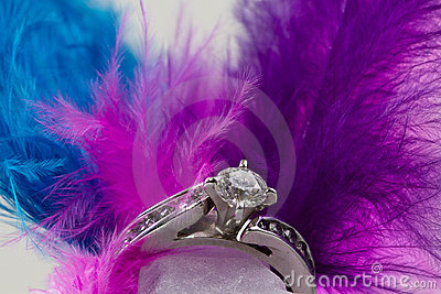 Engagement Ring and feathers