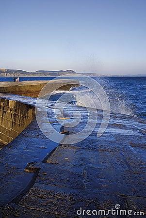 England dorset lyme regis harbour jurassic coast the cobb harbou