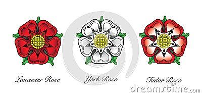 Englisches Rosen-Emblem