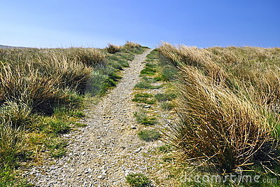 English countryside: footpath, grass, blue sky