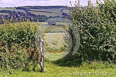 English countryside landscape through gate