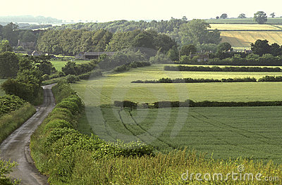 English farm fields