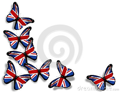 English flag butterflies on white