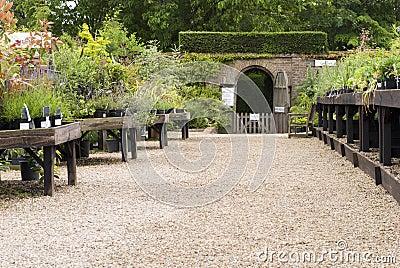 English garden centre