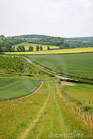 English Landscape with Farm track
