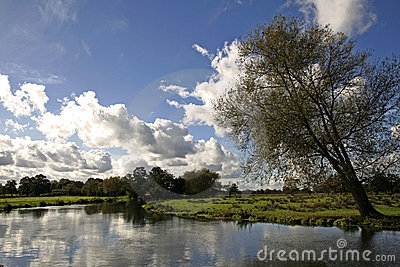 English meadow river wey surrey countryside