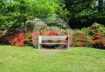 An English Park with bench seat