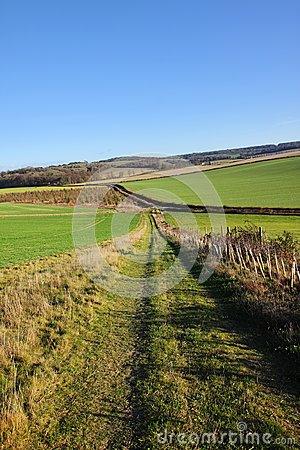 An English Rural Landscape in the Chiltern Hills