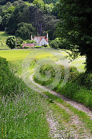 English Rural Landscape with  Farm Track