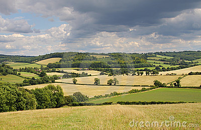 An English Rural Landscape in Summer