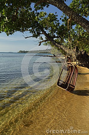 Enjoy the beach in the swing like a king
