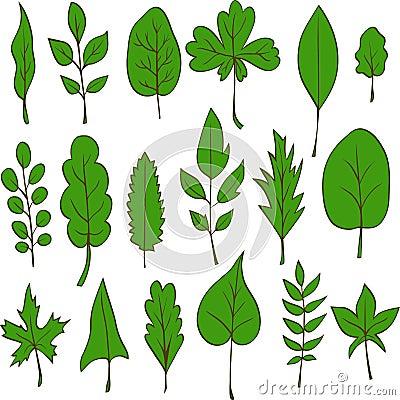 Ensemble de feuilles de vecteur