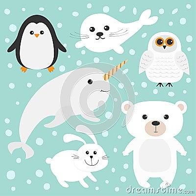 Ensemble Polaire Arctique D animal Ours Blanc Hibou