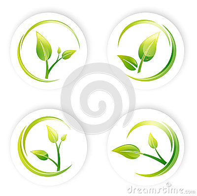 Ensemble vert de conception de feuille de pousse