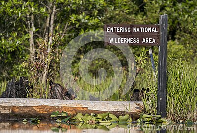 Entering National Wilderness Area kayak Canoe trail direction sign Okefenokee Swamp National Wildlife Refuge, Georgia USA