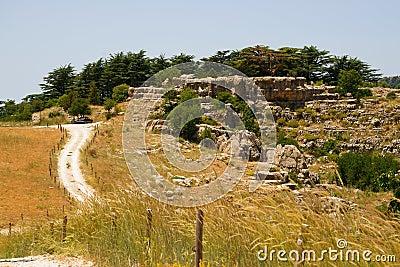 Entrance of Cedar Reserve, Tannourine, Lebanon