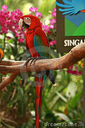 Entrance of the Singapore Bird Park