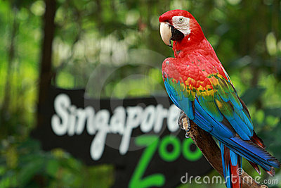 Entrance of the Singapore Zoo Editorial Image