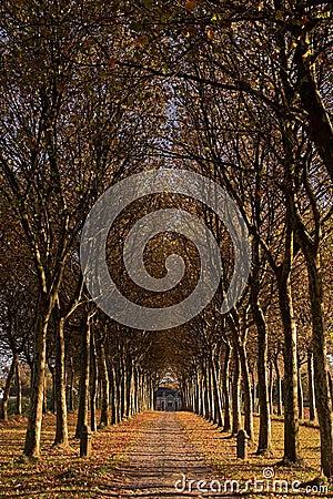 Entrance To Autumn