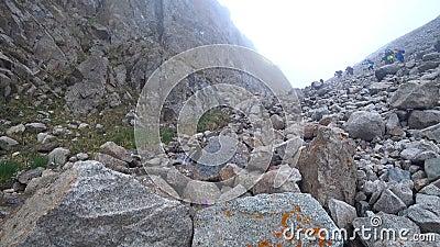 Entre as rochas e as montanhas cresça flores roxas filme
