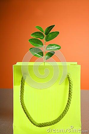 Environment conservation versus consumerism