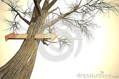 Environment past future tree sign