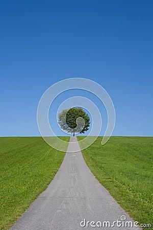Free Environment Protection Stock Photo - 10887850