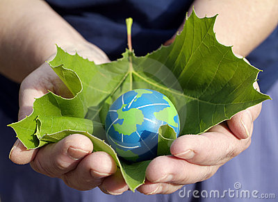 Environmental conservation and sustainability