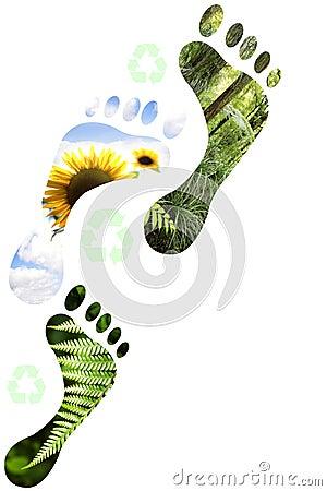 Environmental footprints