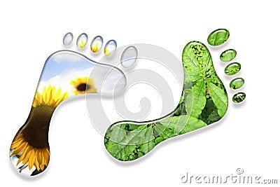 Environmental footprints.