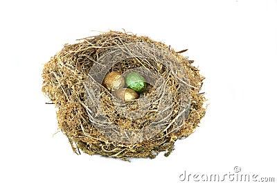 Environmental Nest Egg