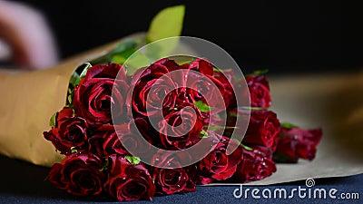 Envolvendo Valentine Red Roses video estoque