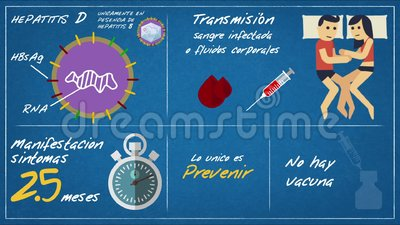 Epatite D - Symptômes de transmission ESP illustration de vecteur