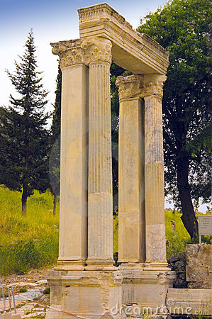 Ephesus marble columns