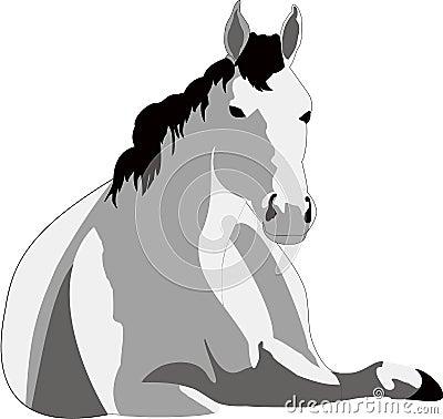 EPS, racehorse