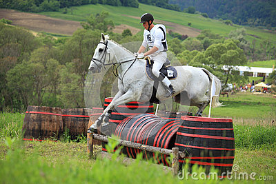 Equestrian Editorial Photography