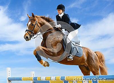 Equestrian bluza