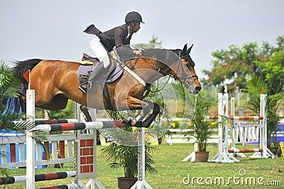 Equestrian doskakiwania przedstawienie Obraz Editorial