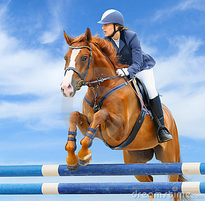 Equestrian doskakiwania przedstawienie sport