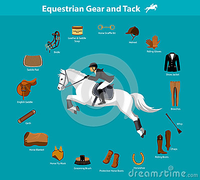 Equestrian Gear And Tack Stock Vector Image 78863561